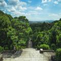 Het Boheemse Woud in Tsjechië